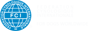 logo-FCI