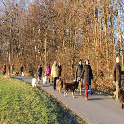 Spaziergang Glücksburg @ Hundewald Glücksburg, Parkplatz